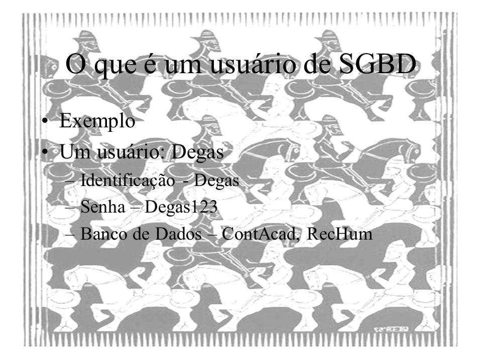 Ser usuário de um SGBD Um usuário de SGBD pode –Incluir, excluir, alterar, consultar dados –Criar, Destruir, Modificar objetos do banco de dados –Modificar os parâmetros de funcionamento do SGBD – Administração Cada uma destas prerrogativas pode estar garantida ou revogada a um usuário