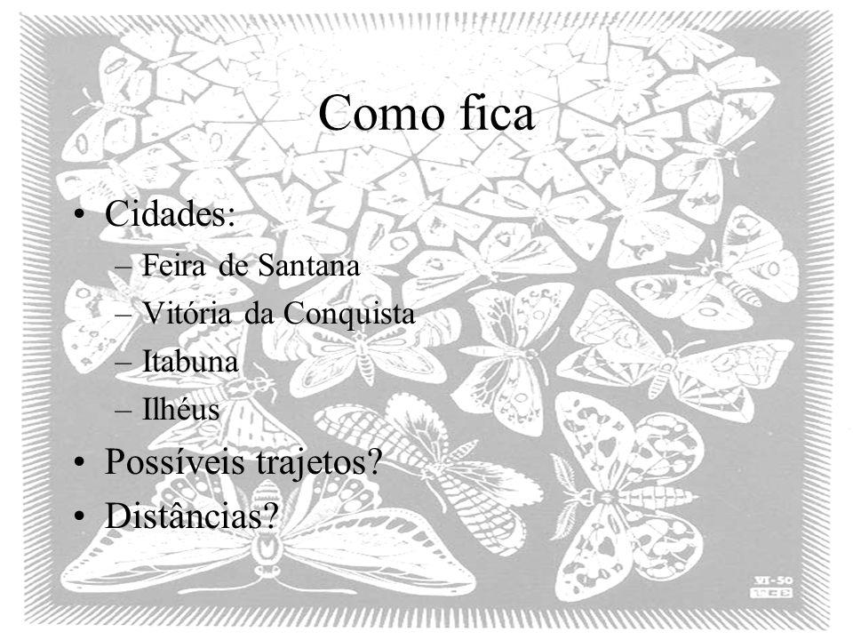 Como fica Cidades: –Feira de Santana –Vitória da Conquista –Itabuna –Ilhéus Possíveis trajetos? Distâncias?