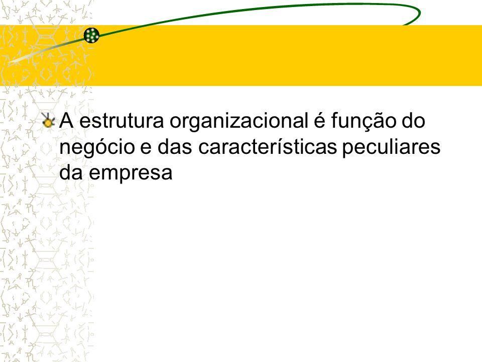 A empresa deve ser enfocada do ponto de vista de suas funções e atividades, independentemente da estrutura organizaciona l Gera estabilidade ao plano