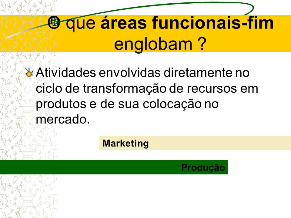 Funções e atividades identificadas devem ser separadas entre: Áreas funcionais-fim Áreas funcionais-meio