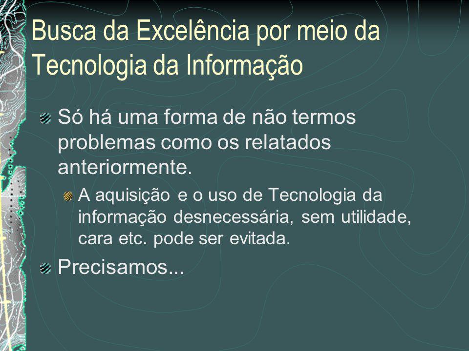 Relação do que foi planejado com o dia a dia da organização - Busca da Excelência por meio da Tecnologia da Informação Prof.