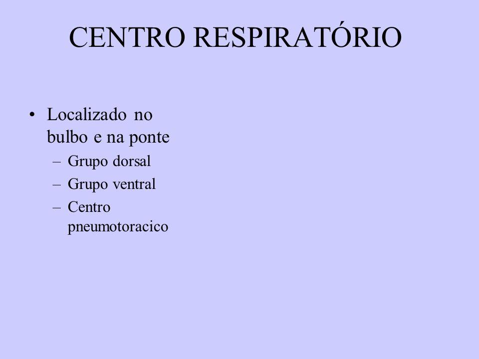 CENTRO RESPIRATÓRIO Localizado no bulbo e na ponte –Grupo dorsal –Grupo ventral –Centro pneumotoracico