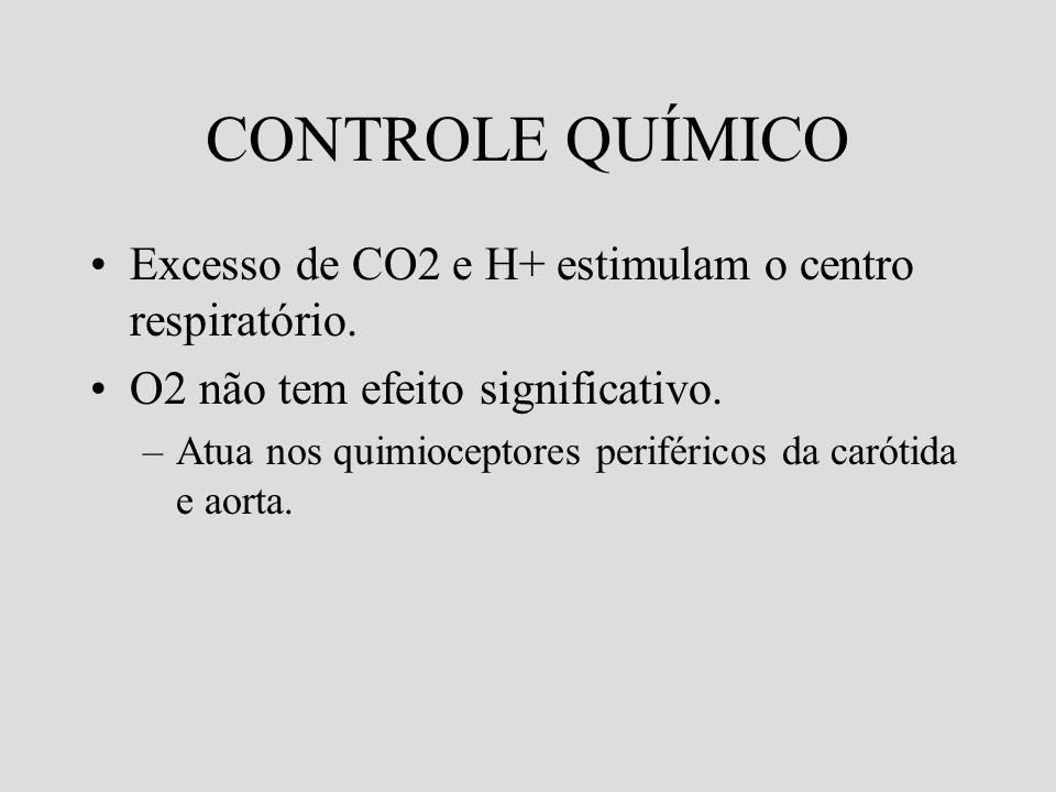 CONTROLE QUÍMICO Excesso de CO2 e H+ estimulam o centro respiratório. O2 não tem efeito significativo. –Atua nos quimioceptores periféricos da carótid