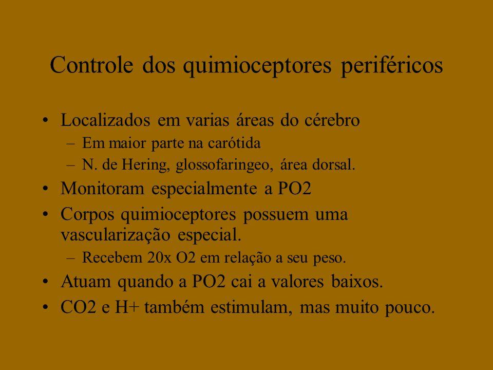 Controle dos quimioceptores periféricos Localizados em varias áreas do cérebro –Em maior parte na carótida –N. de Hering, glossofaringeo, área dorsal.