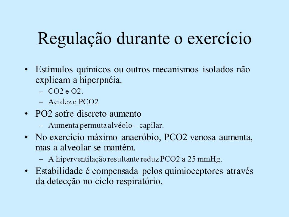 Estímulos químicos ou outros mecanismos isolados não explicam a hiperpnéia. –CO2 e O2. –Acidez e PCO2 PO2 sofre discreto aumento –Aumenta permuta alvé