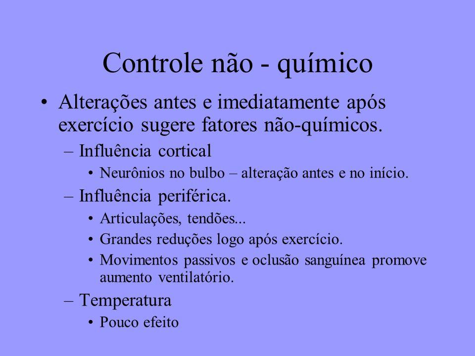Controle não - químico Alterações antes e imediatamente após exercício sugere fatores não-químicos. –Influência cortical Neurônios no bulbo – alteraçã