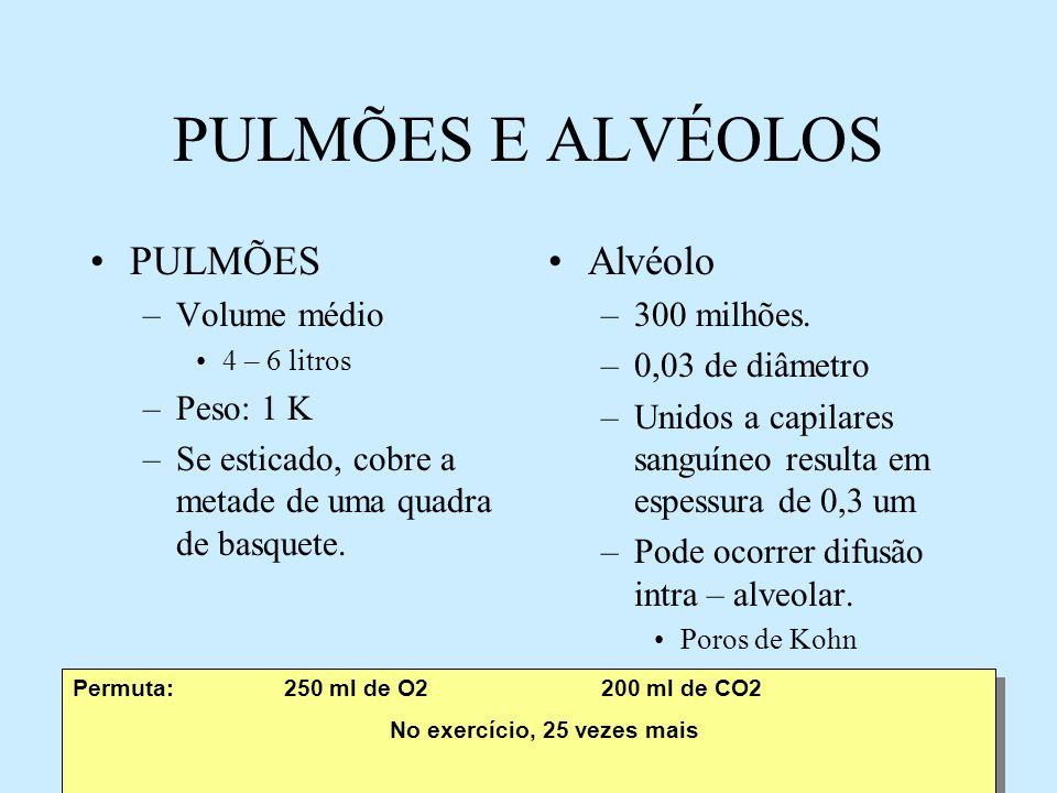 Equivalente respiratório Relação entre volume de ar ventilado e O2 consumido Diferente de limiar ventilatório.
