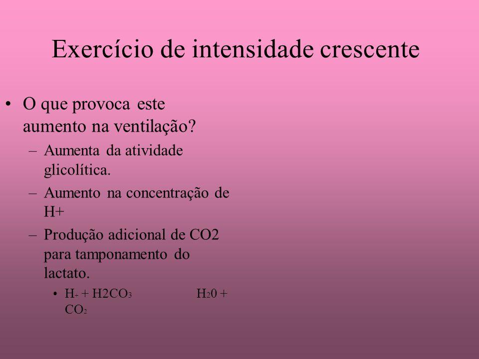 Exercício de intensidade crescente O que provoca este aumento na ventilação? –Aumenta da atividade glicolítica. –Aumento na concentração de H+ –Produç