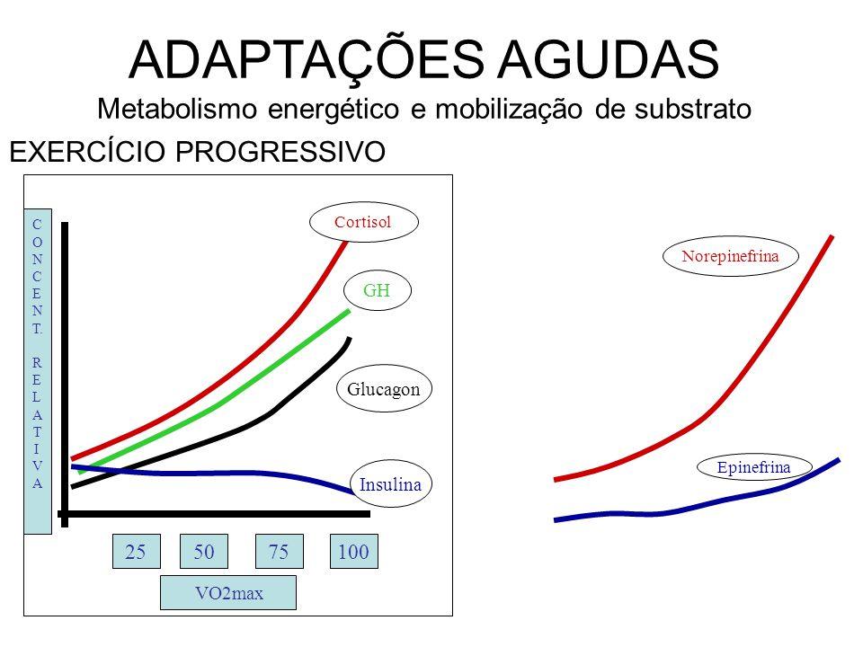 ADAPTAÇÕES AGUDAS Metabolismo energético e mobilização de substrato EXERCÍCIO SUBMÁXIMO Adrenalina Noradrenalina GH Cortisol Glucagon Insulina Respostas hormonais ao exercício prolongado C O N C.