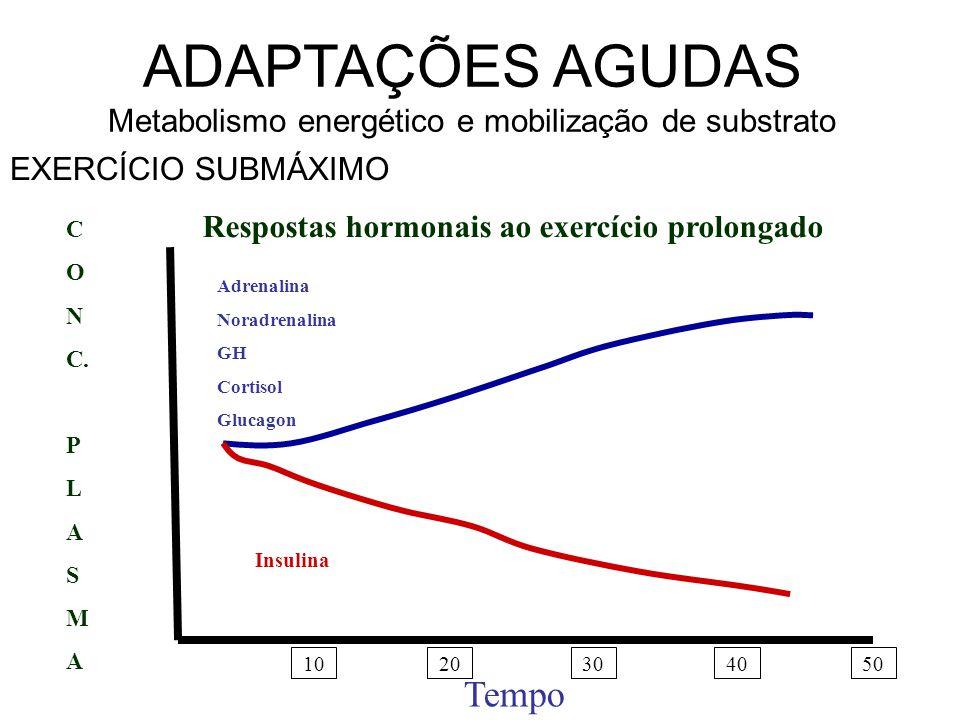 ADAPTAÇÕES AGUDAS Síntese de proteínas Testosterona diminui com exercício Recentes pesquisas indicam amento na testosterona em exercícios curtos No exercício prolongado, cortisol inibe produção da testosterona.
