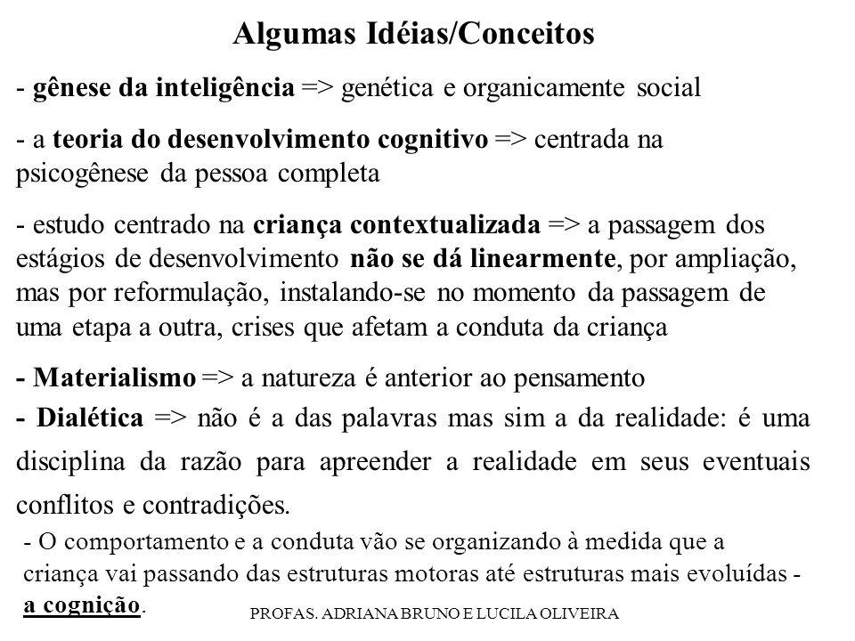 PROFAS. ADRIANA BRUNO E LUCILA OLIVEIRA Algumas Idéias/Conceitos - gênese da inteligência => genética e organicamente social - a teoria do desenvolvim