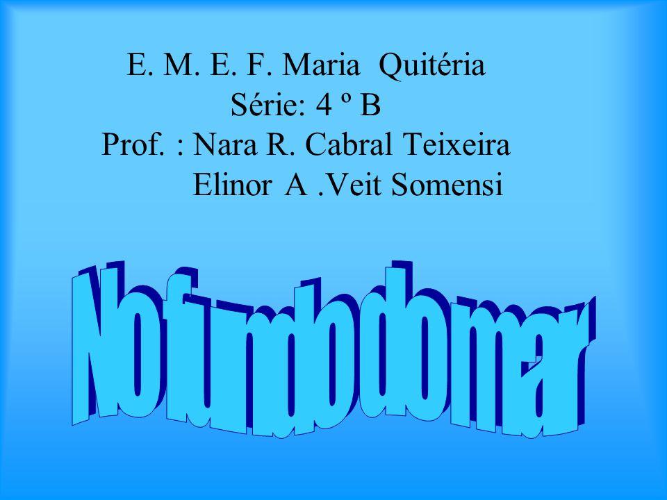 E. M. E. F. Maria Quitéria Série: 4 º B Prof. : Nara R. Cabral Teixeira Elinor A.Veit Somensi