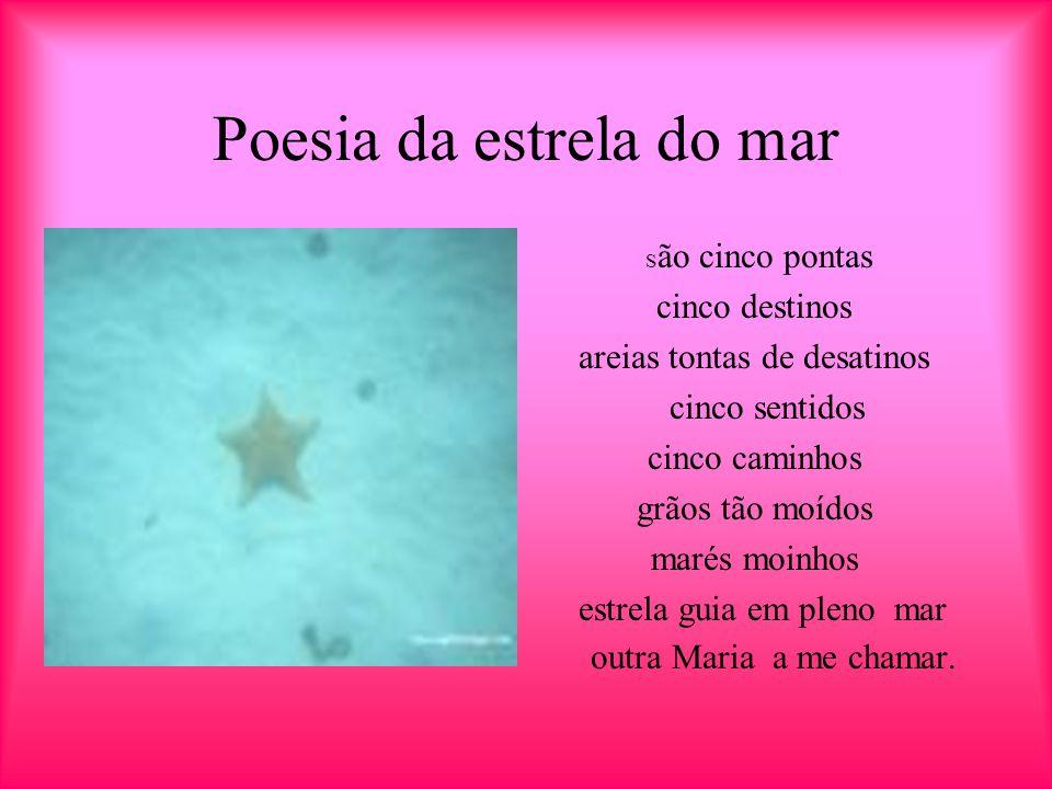 Estrela do mar A estrela do mar é um animal marinho, ela apresenta espinhos no corpo, ela tem esqueleto interno de natureza calcária, dentro dela vive um crustáceo.