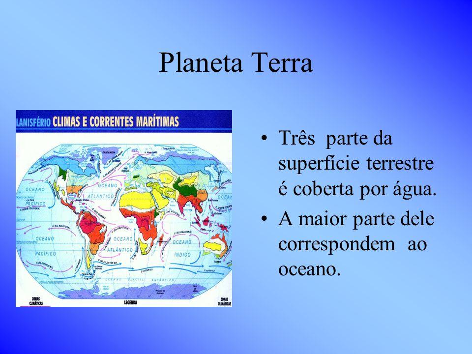 O que queremos saber e o que sabemos? O que sabemos? Sabemos que existem no mar várias espécies de animais,como: peixes, baleias, plantas aquáticas, e