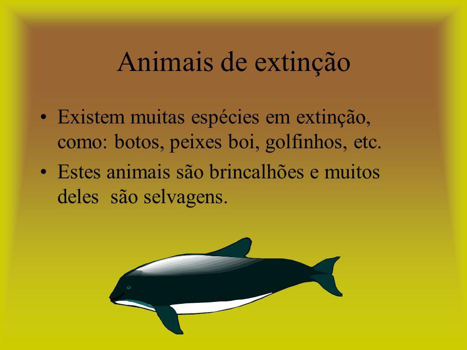 Animais de extinção Existem muitas espécies em extinção, como: botos, peixes boi, golfinhos, etc.