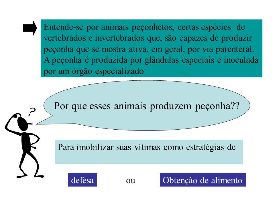 Entende-se por animais peçonhetos, certas espécies de vertebrados e invertebrados que, são capazes de produzir peçonha que se mostra ativa, em geral, por via parenteral.