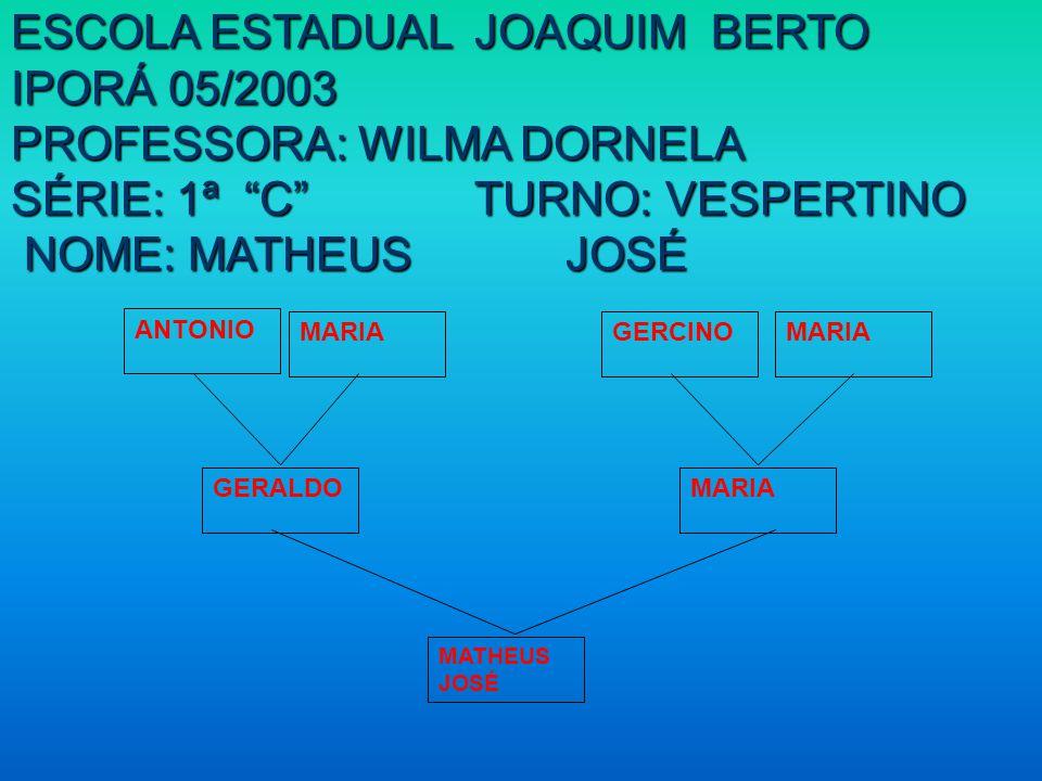 ESCOLA ESTADUAL JOAQUIM BERTO IPORÁ 05/2003 PROFESSORA: WILMA DORNELA SÉRIE: 1ª C TURNO: VESPERTINO NOME: MATHEUS JOSÉ NOME: MATHEUS JOSÉ MATHEUS JOSÉ