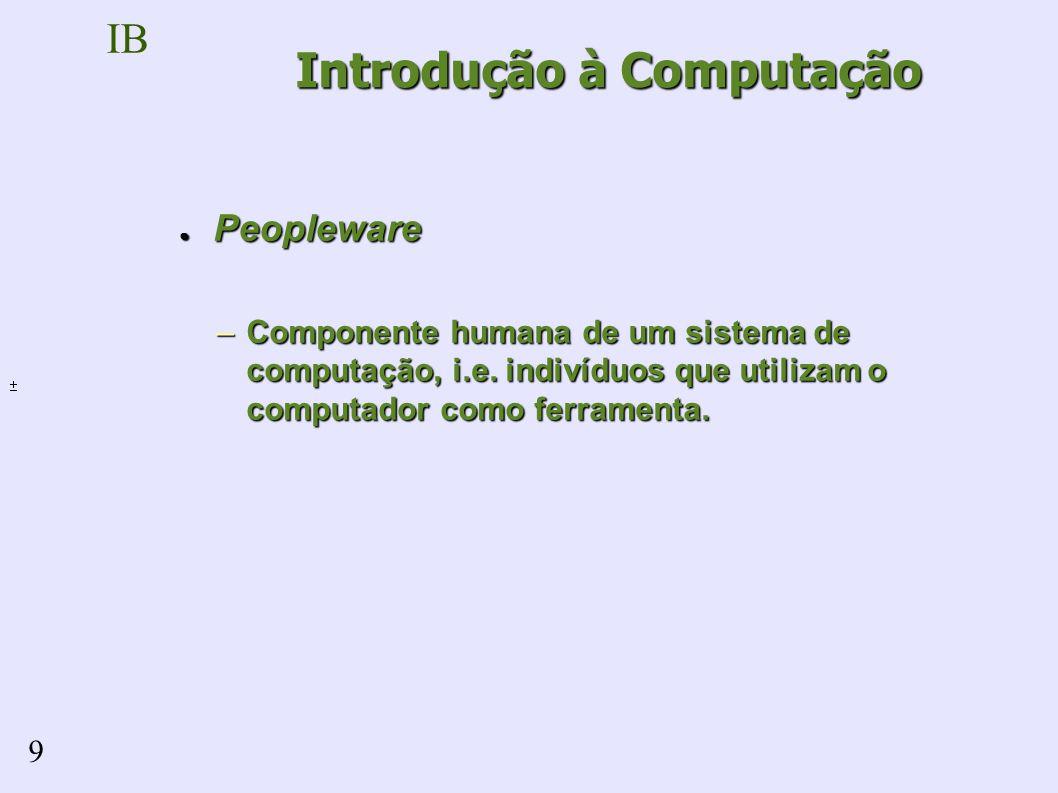 IB 9 Peopleware Peopleware –Componente humana de um sistema de computação, i.e.