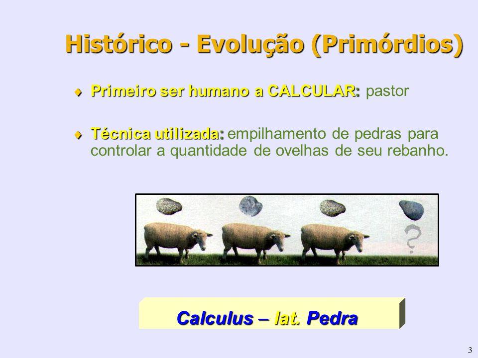 3 Primeiro ser humano a CALCULAR: Primeiro ser humano a CALCULAR: pastor Técnica utilizada: Técnica utilizada: empilhamento de pedras para controlar a