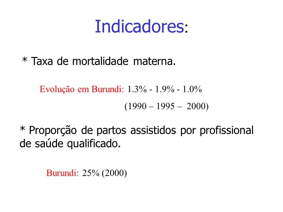 Indicadores * Taxa de mortalidade materna. * Proporção de partos assistidos por profissional de saúde qualificado. Evolução em Burundi: 1.3% - 1.9% -