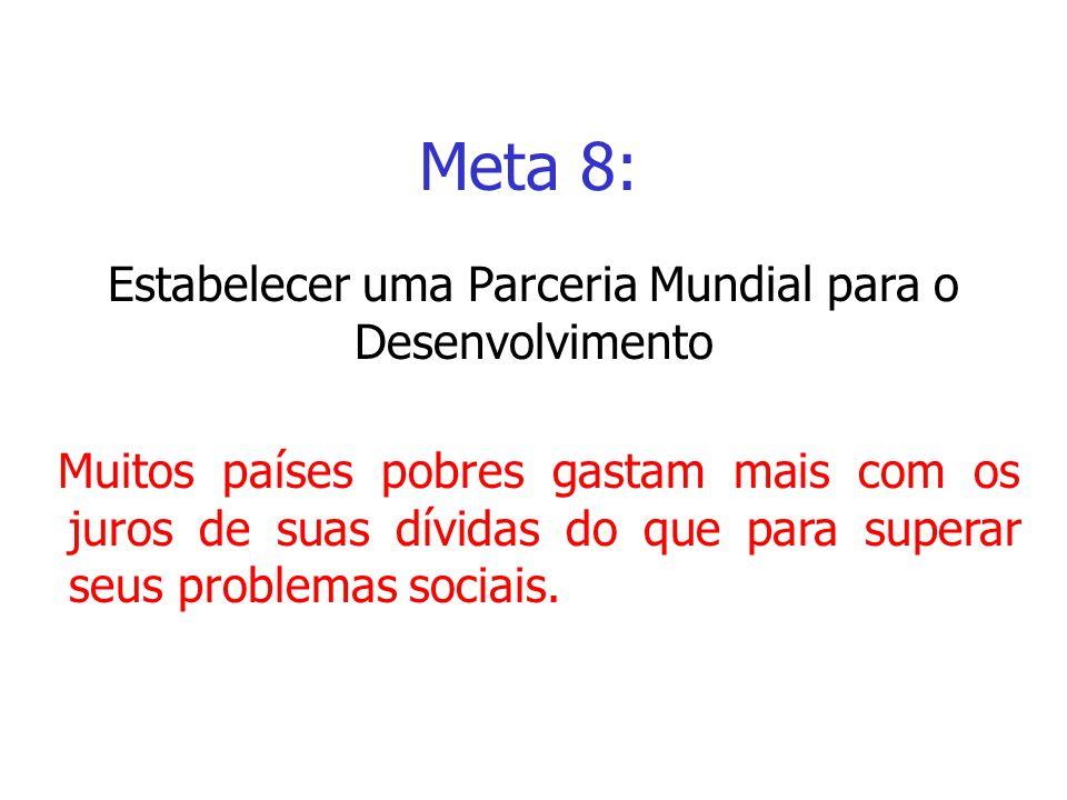 Meta 8: Muitos países pobres gastam mais com os juros de suas dívidas do que para superar seus problemas sociais. Meta 8: Estabelecer uma Parceria Mun
