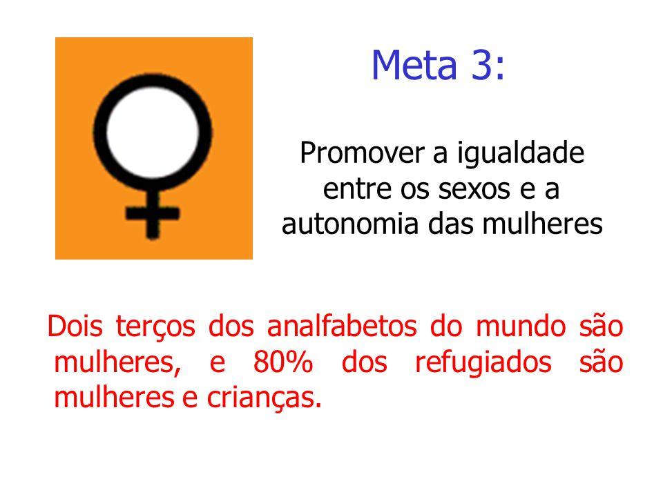 Dois terços dos analfabetos do mundo são mulheres, e 80% dos refugiados são mulheres e crianças. Meta 3: Promover a igualdade entre os sexos e a auton