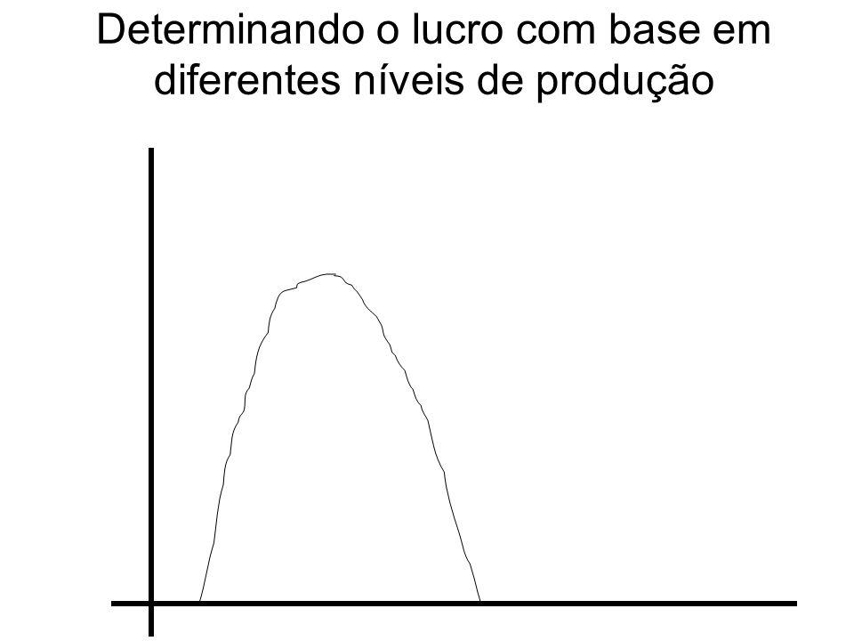 Determinando o lucro com base em diferentes níveis de produção