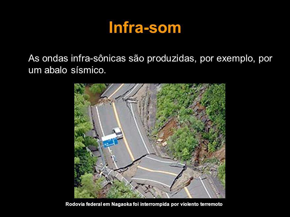Infra-som As ondas infra-sônicas são produzidas, por exemplo, por um abalo sísmico. Rodovia federal em Nagaoka foi interrompida por violento terremoto