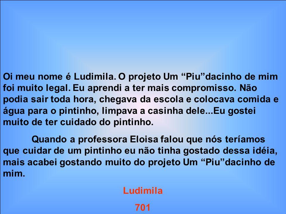 Oi meu nome é Ludimila. O projeto Um Piudacinho de mim foi muito legal. Eu aprendi a ter mais compromisso. Não podia sair toda hora, chegava da escola