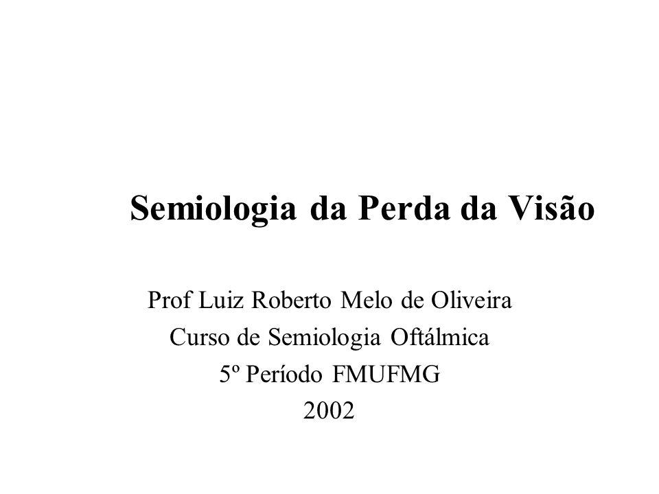 Semiologia da Perda da Visão Prof Luiz Roberto Melo de Oliveira Curso de Semiologia Oftálmica 5º Período FMUFMG 2002