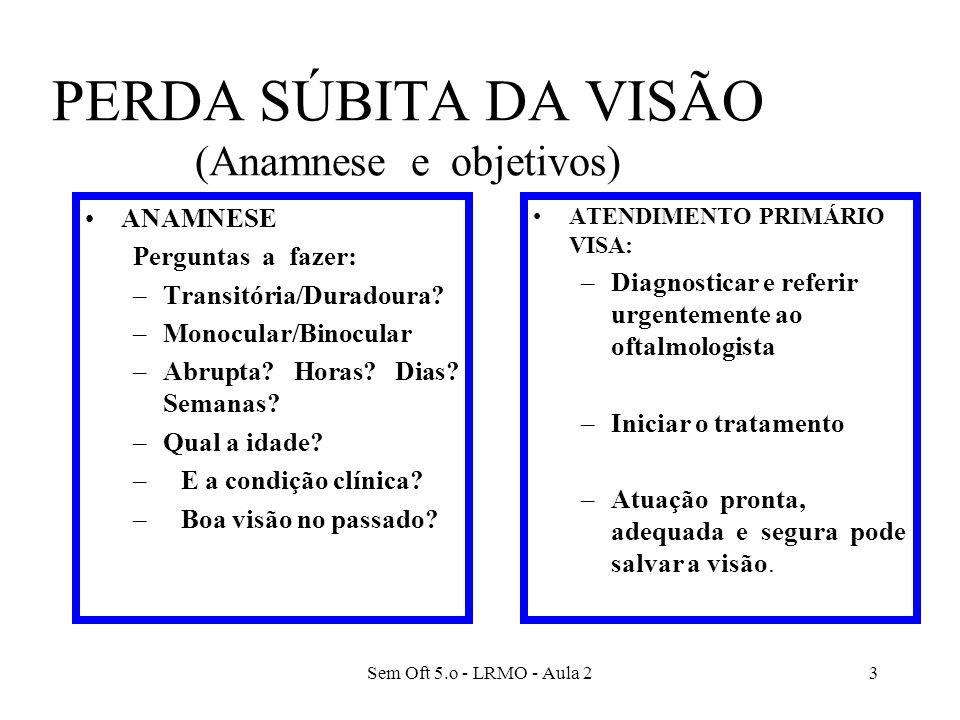 Sem Oft 5.o - LRMO - Aula 24 Perda súbita da visão COMO EXAMINAR: Acuidade visual Campos visuais de confrontação Reações pupilares Oftalmoscopia Ectoscopia (com lanterna) Tonometria bidigital