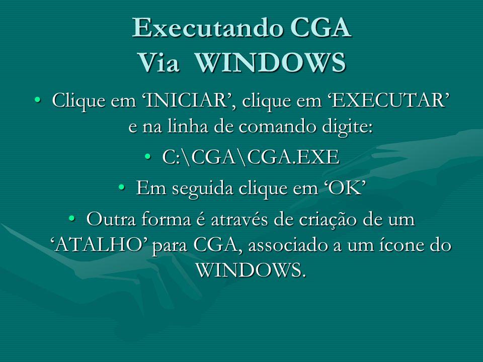 Executando CGA Via WINDOWS Clique em INICIAR, clique em EXECUTAR e na linha de comando digite:Clique em INICIAR, clique em EXECUTAR e na linha de coma