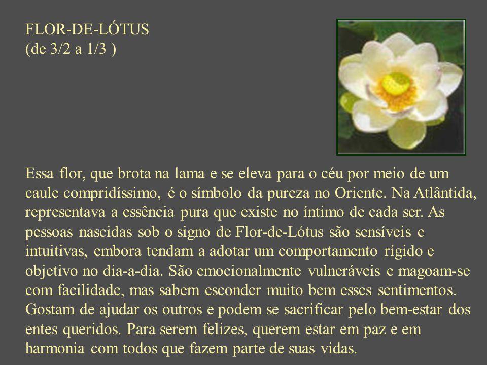 FLOR-DE-LÓTUS (de 3/2 a 1/3 ) Essa flor, que brota na lama e se eleva para o céu por meio de um caule compridíssimo, é o símbolo da pureza no Oriente.