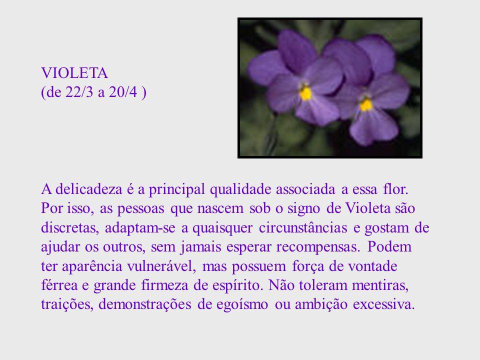 VIOLETA (de 22/3 a 20/4 ) A delicadeza é a principal qualidade associada a essa flor. Por isso, as pessoas que nascem sob o signo de Violeta são discr