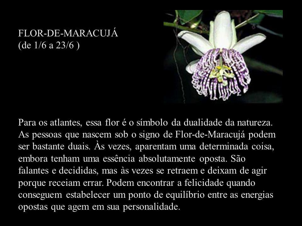 FLOR-DE-MARACUJÁ (de 1/6 a 23/6 ) Para os atlantes, essa flor é o símbolo da dualidade da natureza. As pessoas que nascem sob o signo de Flor-de-Marac