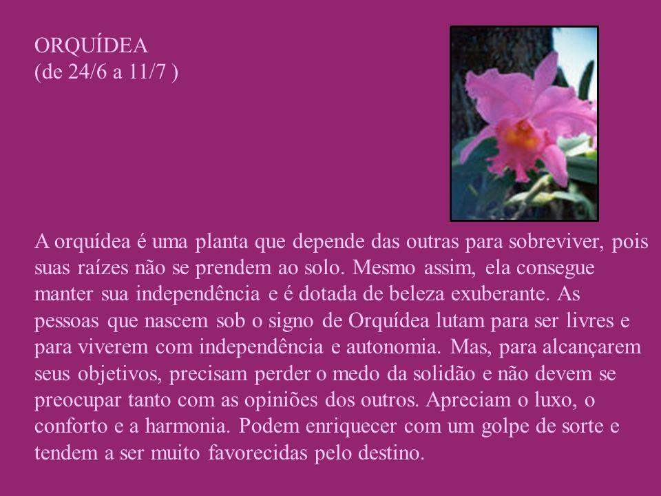 ORQUÍDEA (de 24/6 a 11/7 ) A orquídea é uma planta que depende das outras para sobreviver, pois suas raízes não se prendem ao solo. Mesmo assim, ela c