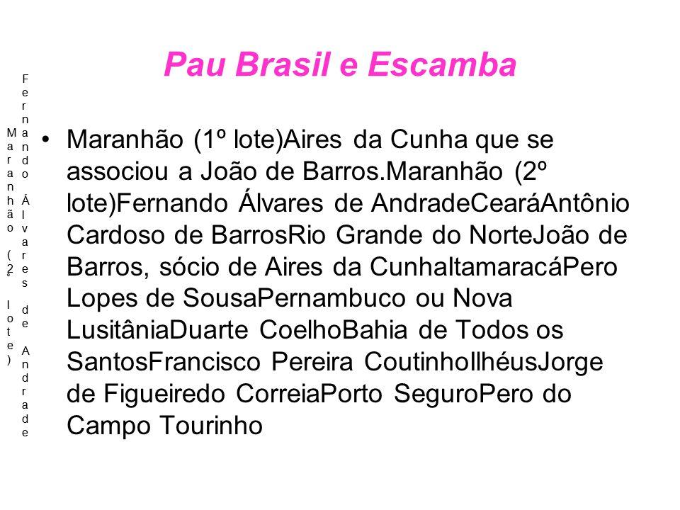 Pau Brasil e Escamba Maranhão (1º lote)Aires da Cunha que se associou a João de Barros.Maranhão (2º lote)Fernando Álvares de AndradeCearáAntônio Cardo