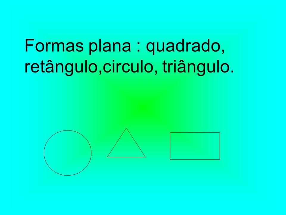 Formas plana : quadrado, retângulo,circulo, triângulo.