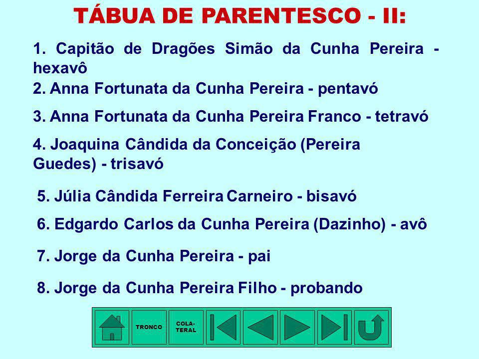 TÁBUA DE PARENTESCO - I: 1. Capitão de Dragões Simão da Cunha Pereira - pentavô 2. Marianna Luciana da Cunha Pereira - tetravó 3. Capitão de Milícia S