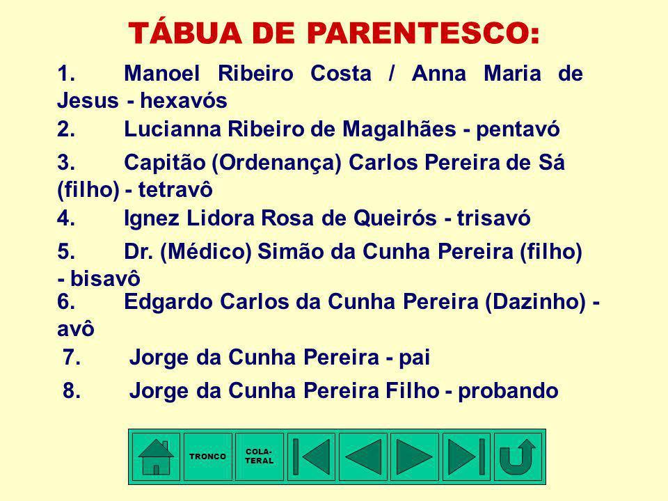 TRONCO - 5ª Família: RIBEIRO COSTA Membro mais antigo conhecido: Manoel RIBEIRO COSTA. Freguesia de Santa Cristina de Meadela, Vila de Viana, Arcebisp
