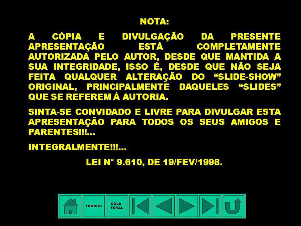 SELO COMEMORATIVO DOS 250 ANOS DE NASCIMENTO ESTA APRESENTAÇÃO É UMA HOMENAGEM A MARIANNA LUCIANA DA CUNHA PEREIRA © Copyright 2003, Jorge da Cunha Pe