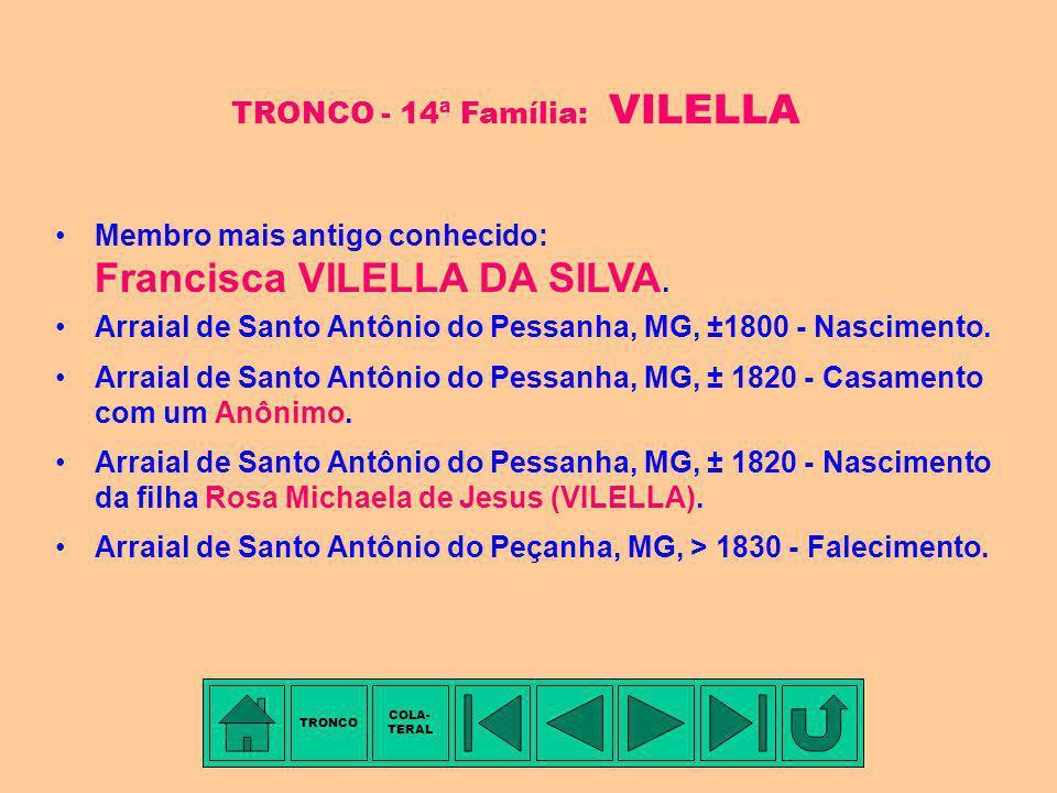 Você está aqui TRONCO COLA- TERAL FAMÍLIAS RELACIONADAS COM A FAMÍLIA CUNHA PEREIRA Ajudante de Milícia Francisco Antônio DA SILVEIRA Marianna Luciana