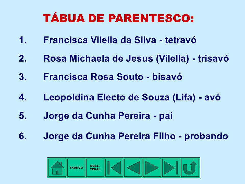 TRONCO - 14ª Família: VILELLA Membro mais antigo conhecido: Francisca VILELLA DA SILVA. Arraial de Santo Antônio do Pessanha, MG, ±1800 - Nascimento.