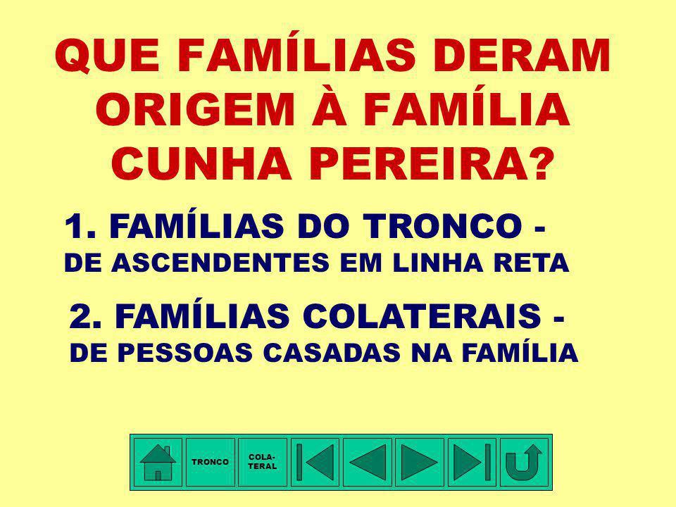 TÁBUA DE PARENTESCO - I: 1.Capitão de Dragões Simão da Cunha Pereira - pentavô 2.