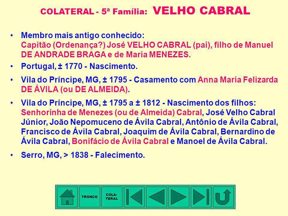 Você está aqui FAMÍLIAS RELACIONADAS COM A FAMÍLIA CUNHA PEREIRA Ajudante de Milícia Francisco Antônio DA SILVEIRA Marianna Luciana DA CUNHA PEREIRA F