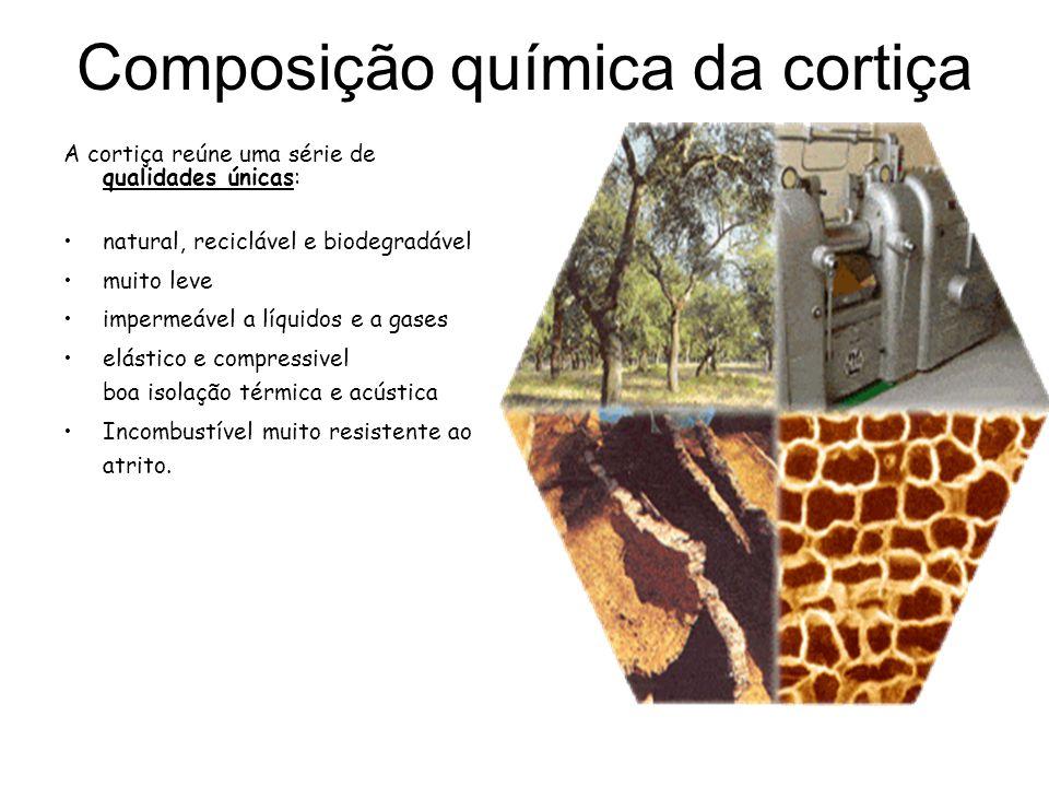 A cortiça reúne uma série de qualidades únicas: natural, reciclável e biodegradável muito leve impermeável a líquidos e a gases elástico e compressive