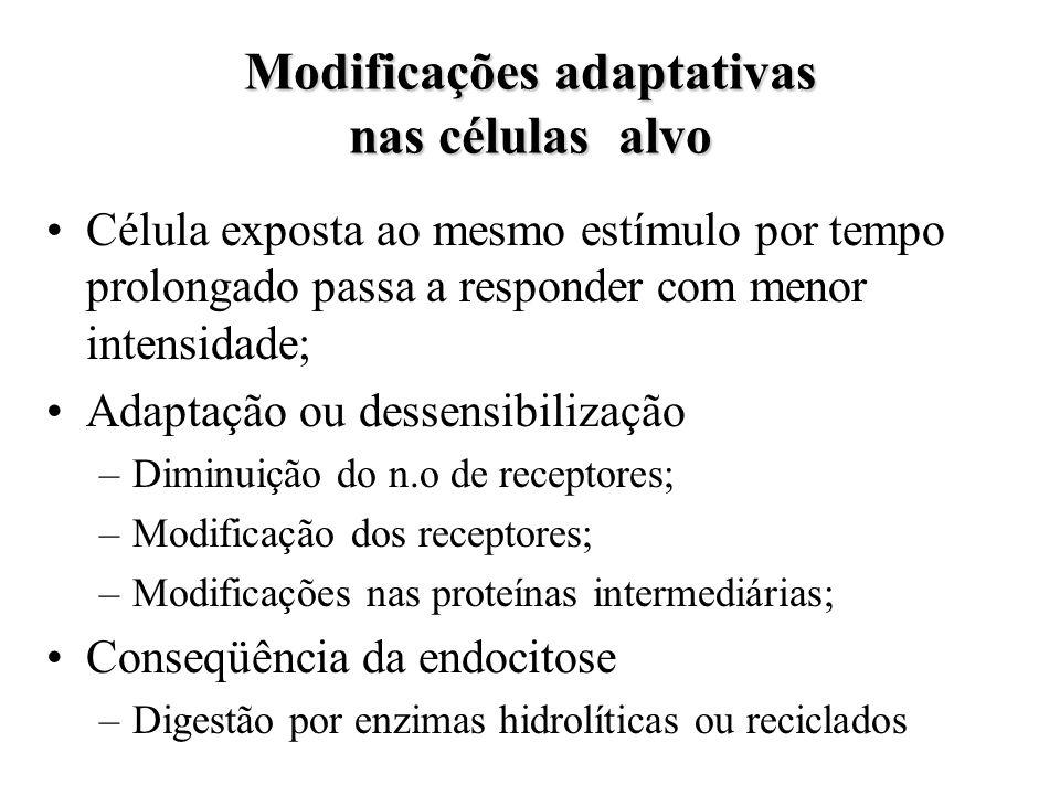 Modificações adaptativas nas células alvo Célula exposta ao mesmo estímulo por tempo prolongado passa a responder com menor intensidade; Adaptação ou