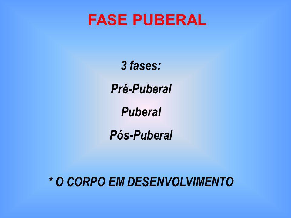 FASE PUBERAL 3 fases: Pré-Puberal Puberal Pós-Puberal * O CORPO EM DESENVOLVIMENTO