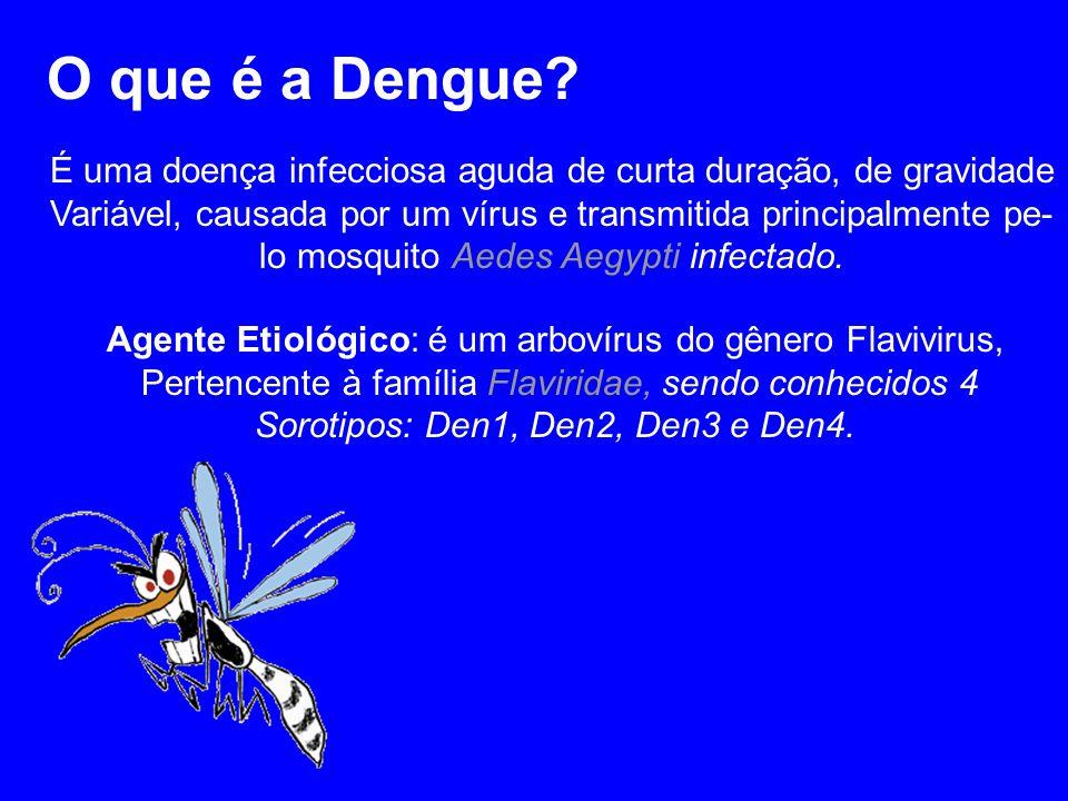 O que é a Dengue? É uma doença infecciosa aguda de curta duração, de gravidade Variável, causada por um vírus e transmitida principalmente pe- lo mosq