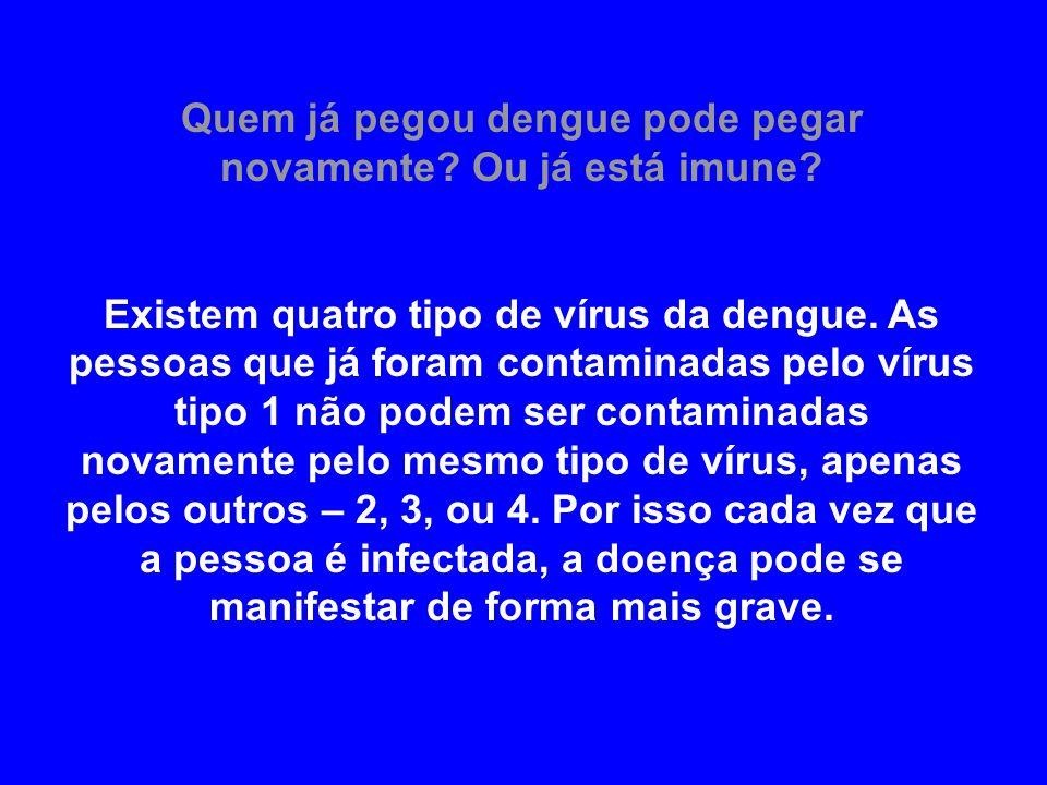 Quem já pegou dengue pode pegar novamente? Ou já está imune? Existem quatro tipo de vírus da dengue. As pessoas que já foram contaminadas pelo vírus t